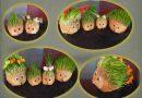 Dekorativni Božićni ježići od žita