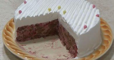 Nepečena posna torta sa malinama