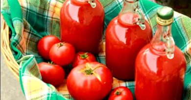Sok od paradajza – ukus i miris je fantastičan – Tomato Juice Recipe