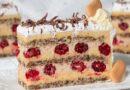 Plazmalina – najtraženiji recept za plazma tortu sa malinama